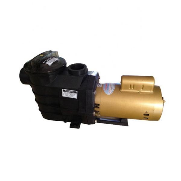 Piston Pump PVM018ER01AS02AAA28000000A0A  Piston Pump #1 image